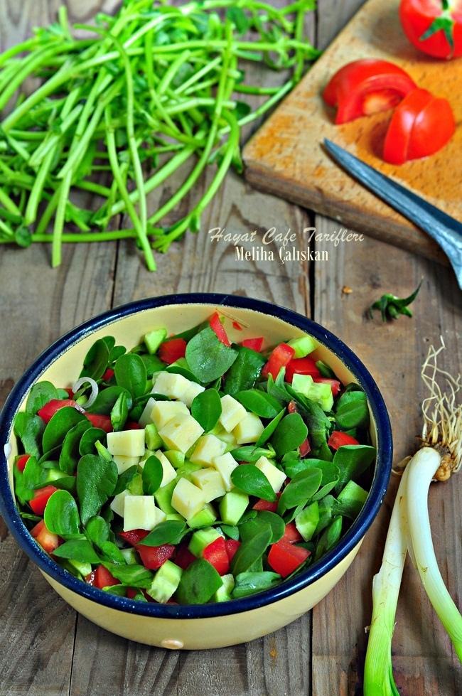 domatesli semizotu salatasi